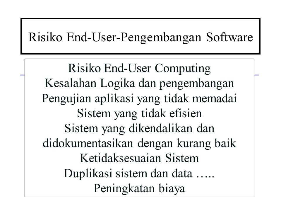 Risiko End-User-Pengembangan Software