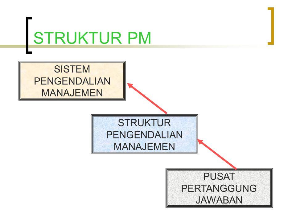 STRUKTUR PM SISTEM PENGENDALIAN MANAJEMEN STRUKTUR PENGENDALIAN