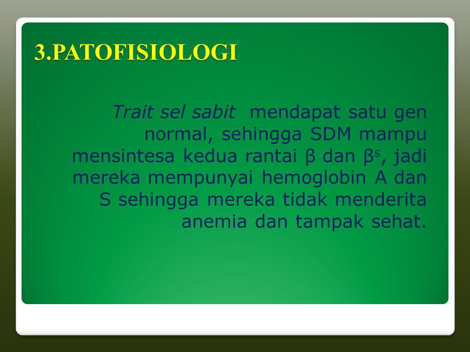 3.PATOFISIOLOGI