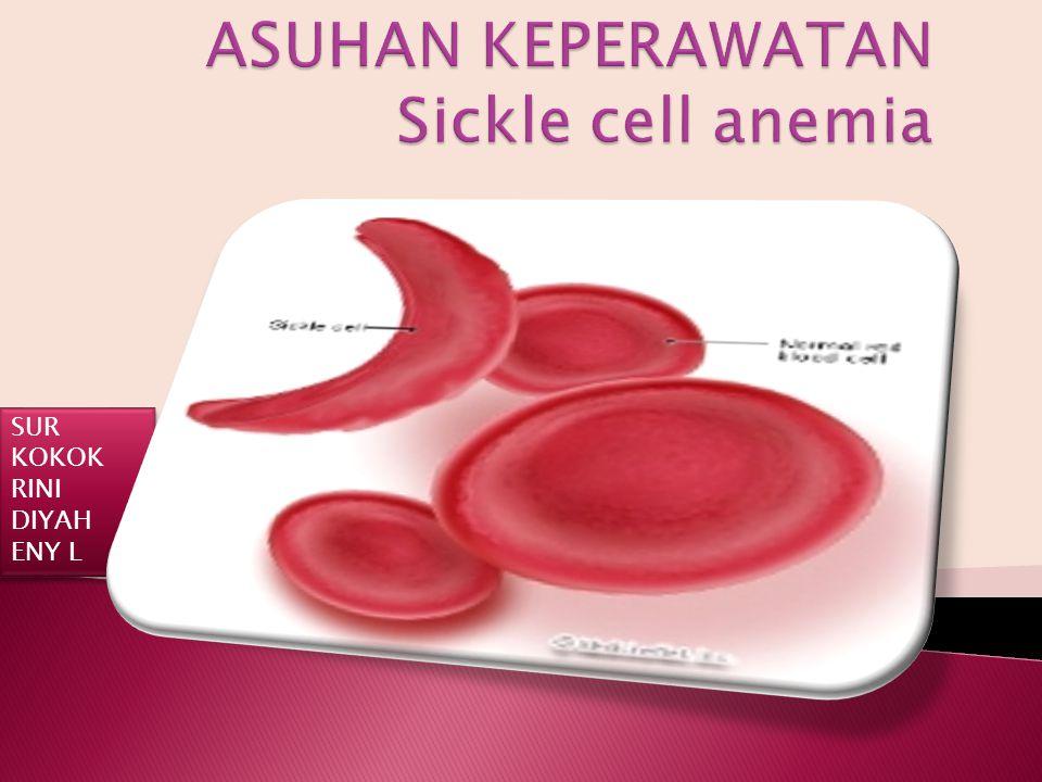 ASUHAN KEPERAWATAN Sickle cell anemia