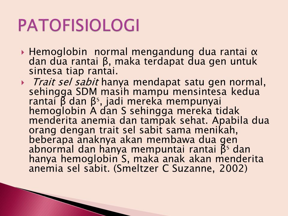 PATOFISIOLOGI Hemoglobin normal mengandung dua rantai α dan dua rantai β, maka terdapat dua gen untuk sintesa tiap rantai.