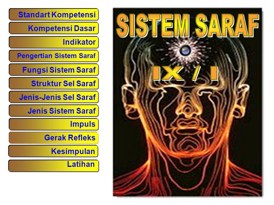 SISTEM SARAF IX / I Standart Kompetensi Kompetensi Dasar Indikator
