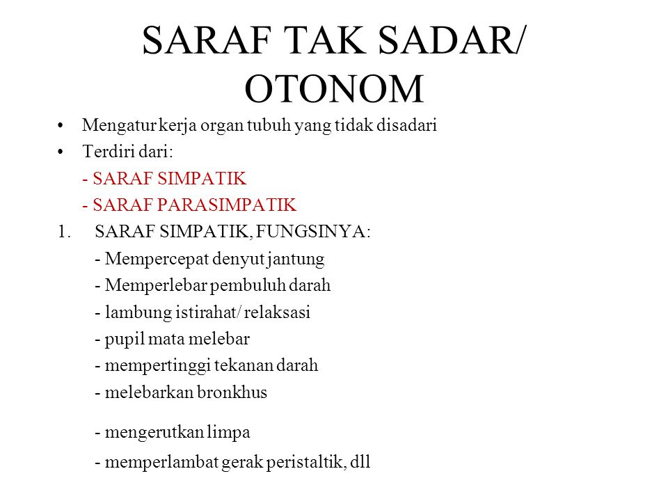 SARAF TAK SADAR/ OTONOM