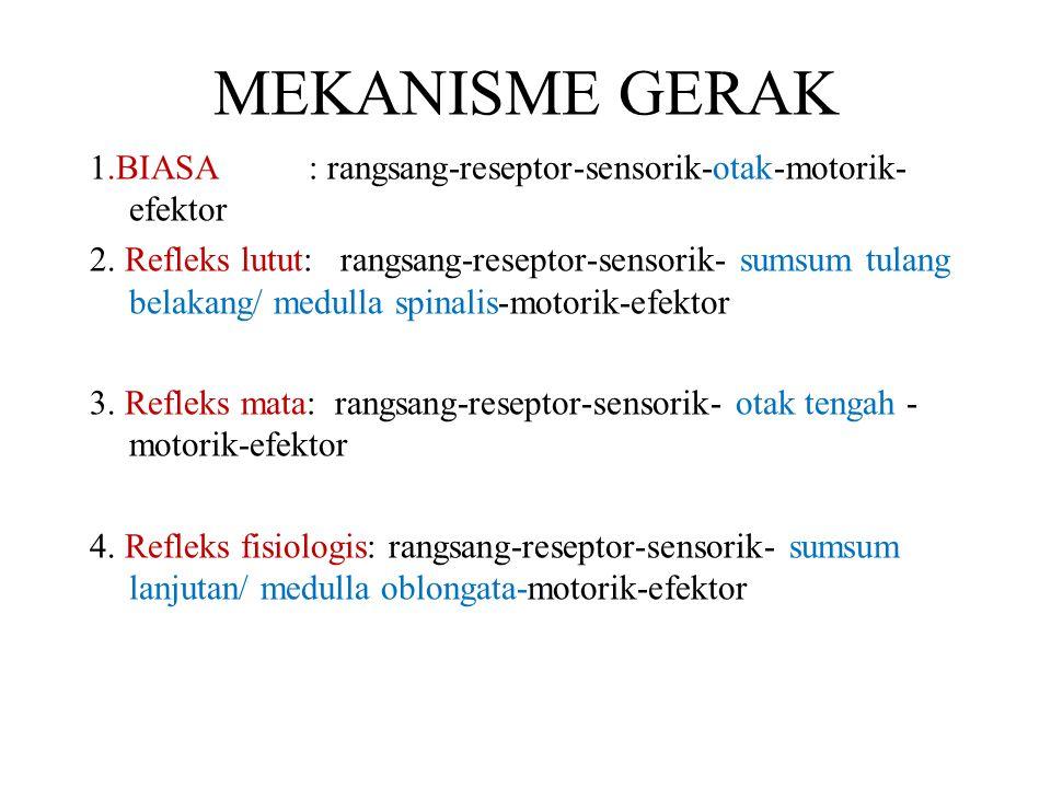 MEKANISME GERAK