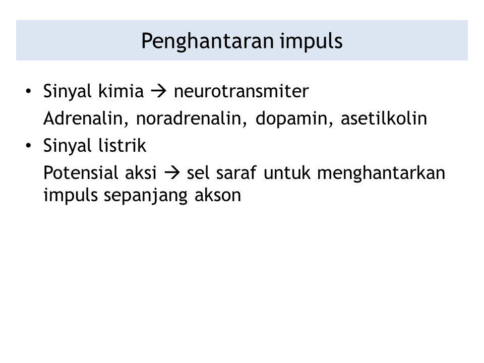 Penghantaran impuls Sinyal kimia  neurotransmiter