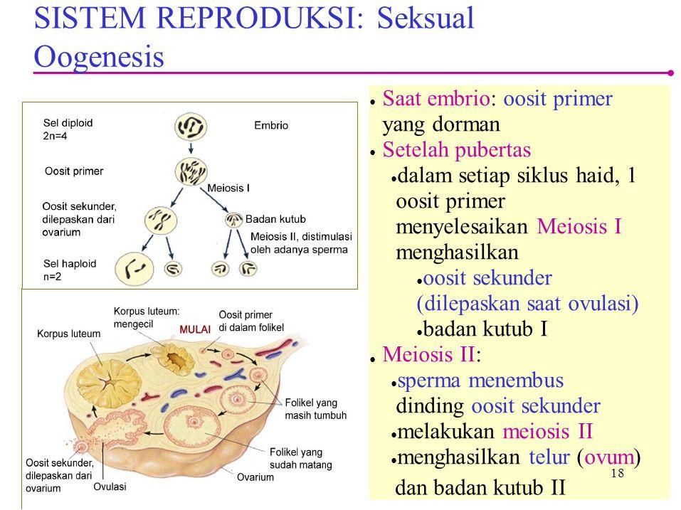 SISTEM REPRODUKSI: Seksual Oogenesis