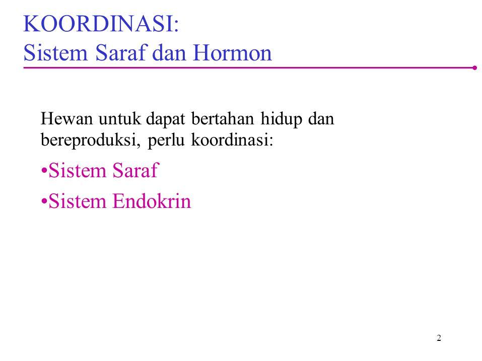 Sistem Saraf dan Hormon