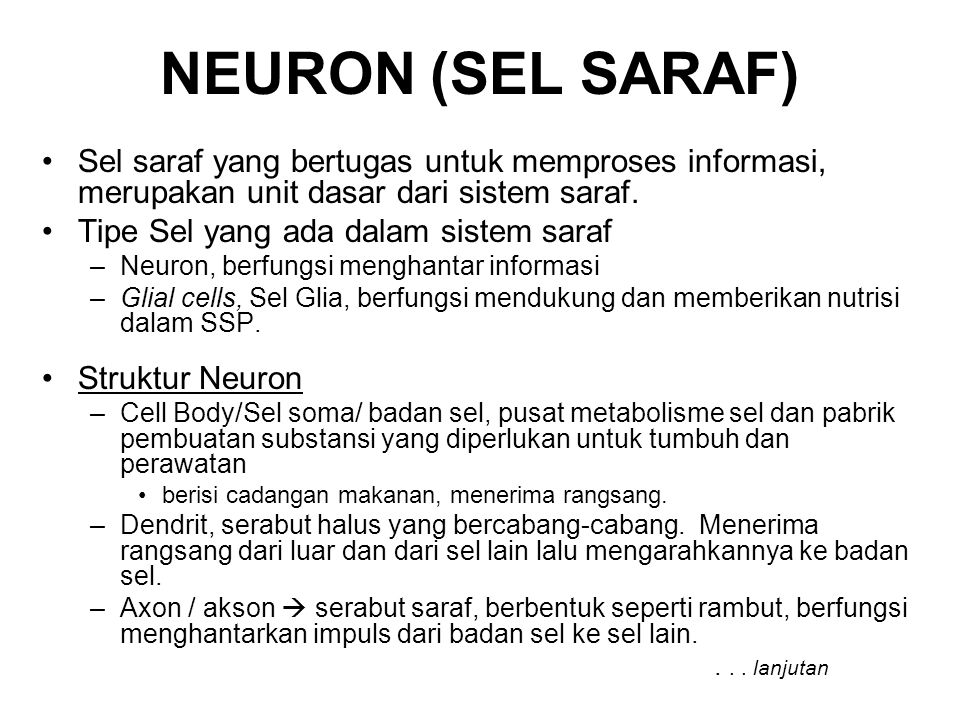 NEURON (SEL SARAF) Sel saraf yang bertugas untuk memproses informasi, merupakan unit dasar dari sistem saraf.