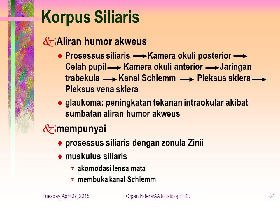 Organ Indera/AAJ/Histologi FKUI