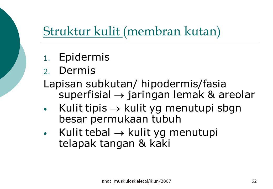 Struktur kulit (membran kutan)