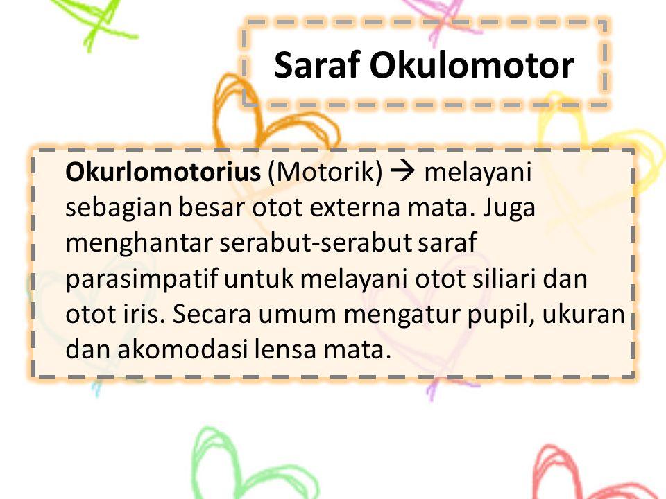 Saraf Okulomotor