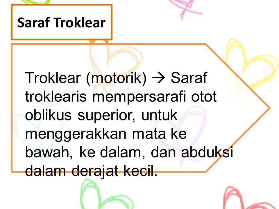Saraf Troklear