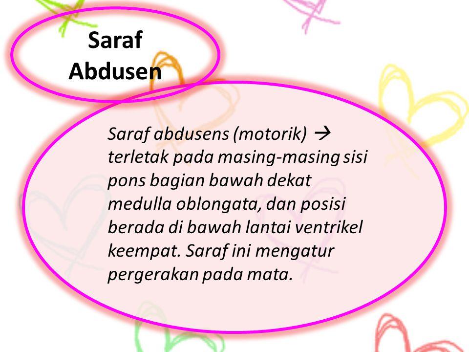 Saraf Abdusen