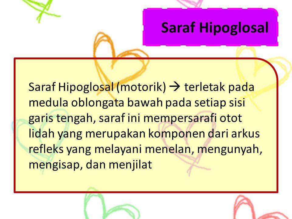 Saraf Hipoglosal