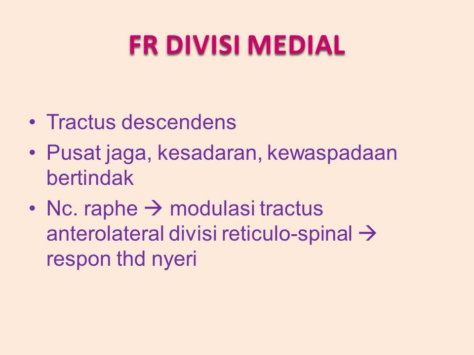 FR DIVISI MEDIAL Tractus descendens