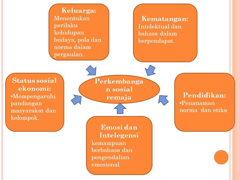 Status sosial ekonomi: Perkembangan sosial remaja