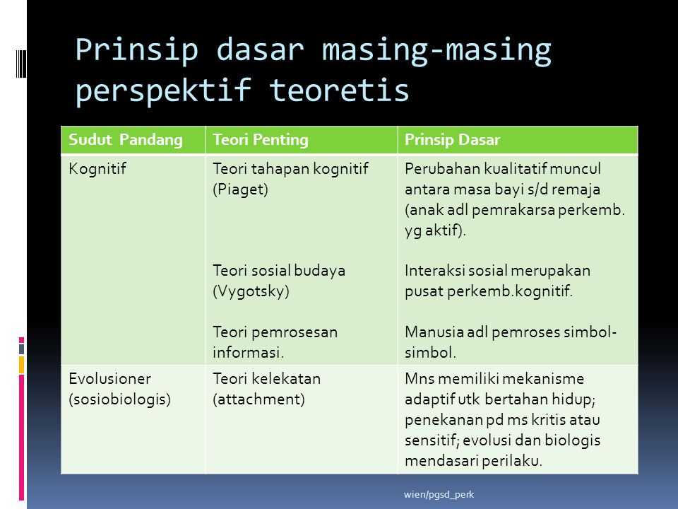 Prinsip dasar masing-masing perspektif teoretis