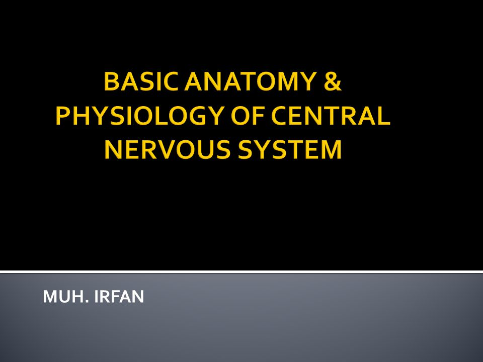 BASIC ANATOMY & PHYSIOLOGY OF CENTRAL NERVOUS SYSTEM
