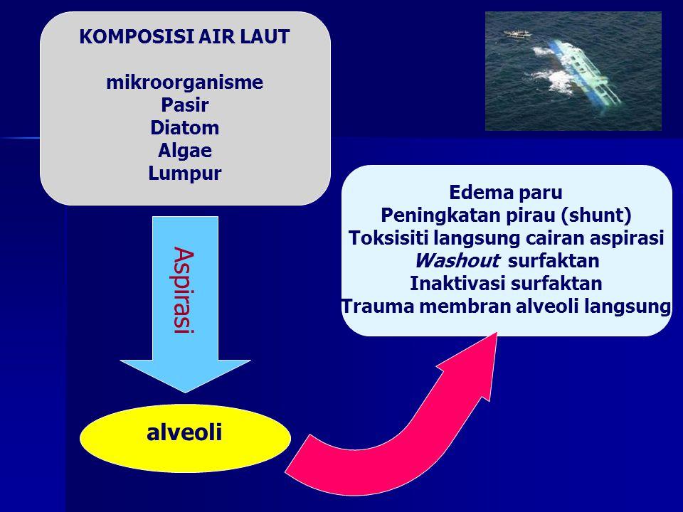Aspirasi alveoli KOMPOSISI AIR LAUT mikroorganisme Pasir Diatom Algae