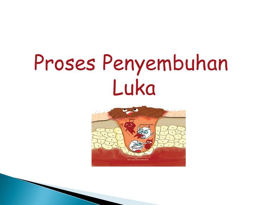 Proses Penyembuhan Luka