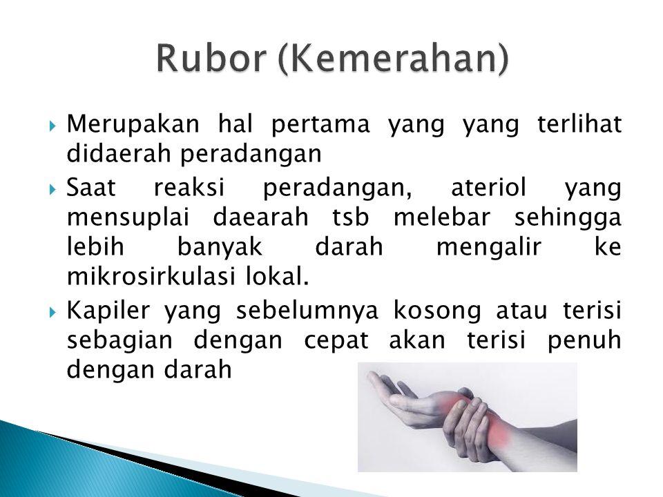 Rubor (Kemerahan) Merupakan hal pertama yang yang terlihat didaerah peradangan.