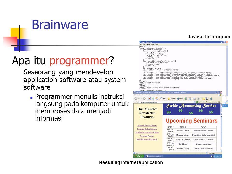 Brainware Apa itu programmer