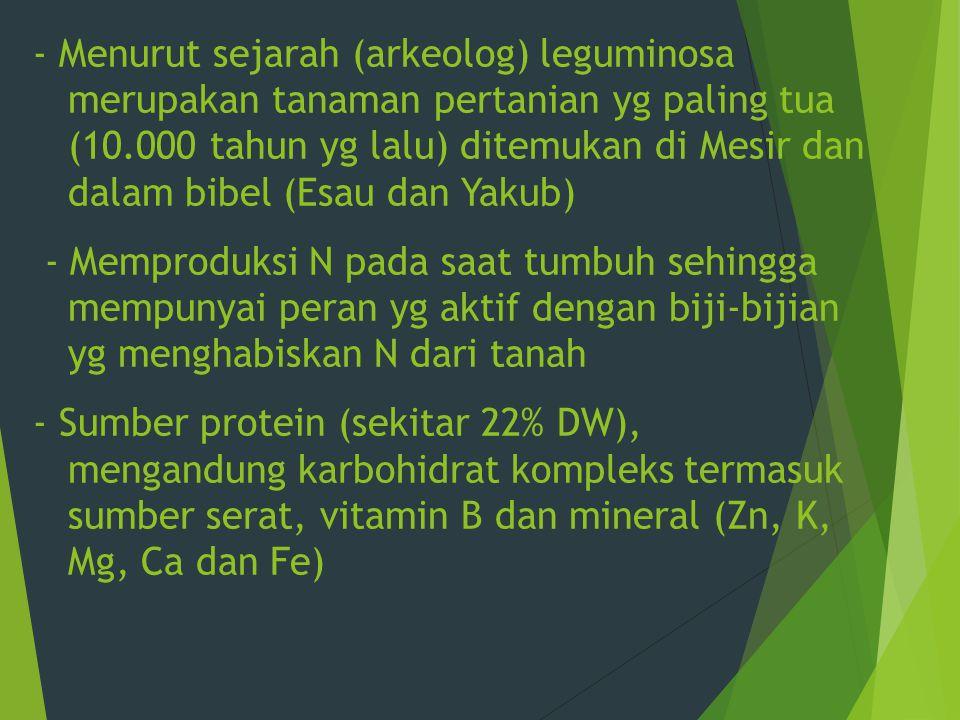 Menurut sejarah (arkeolog) leguminosa merupakan tanaman pertanian yg paling tua (10.000 tahun yg lalu) ditemukan di Mesir dan dalam bibel (Esau dan Yakub) - Memproduksi N pada saat tumbuh sehingga mempunyai peran yg aktif dengan biji-bijian yg menghabiskan N dari tanah - Sumber protein (sekitar 22% DW), mengandung karbohidrat kompleks termasuk sumber serat, vitamin B dan mineral (Zn, K, Mg, Ca dan Fe)
