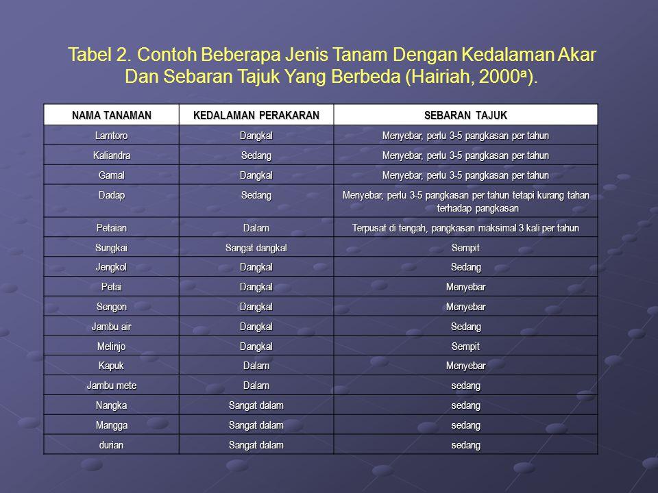 Tabel 2. Contoh Beberapa Jenis Tanam Dengan Kedalaman Akar Dan Sebaran Tajuk Yang Berbeda (Hairiah, 2000a).