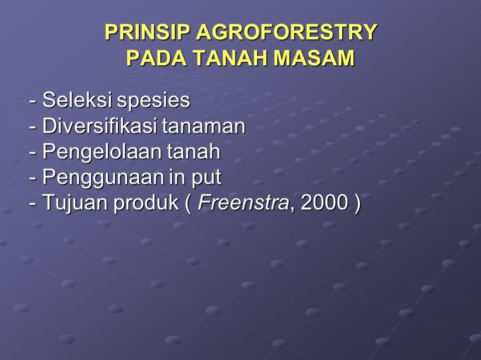 PRINSIP AGROFORESTRY PADA TANAH MASAM