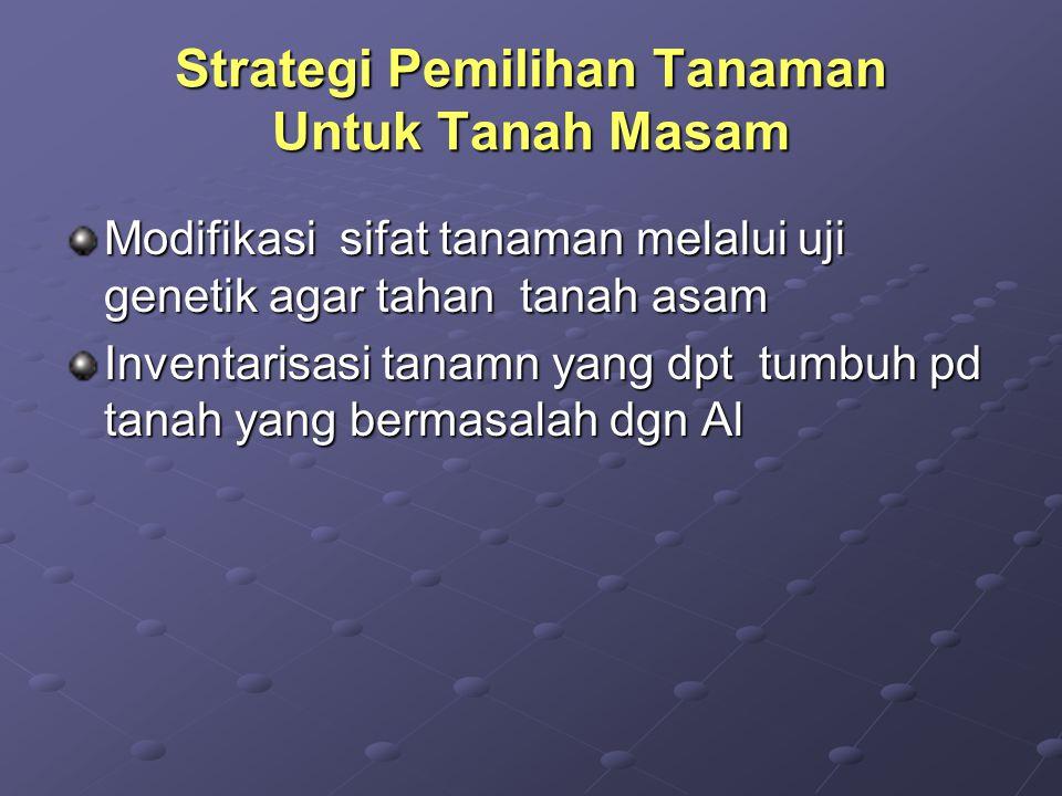 Strategi Pemilihan Tanaman Untuk Tanah Masam
