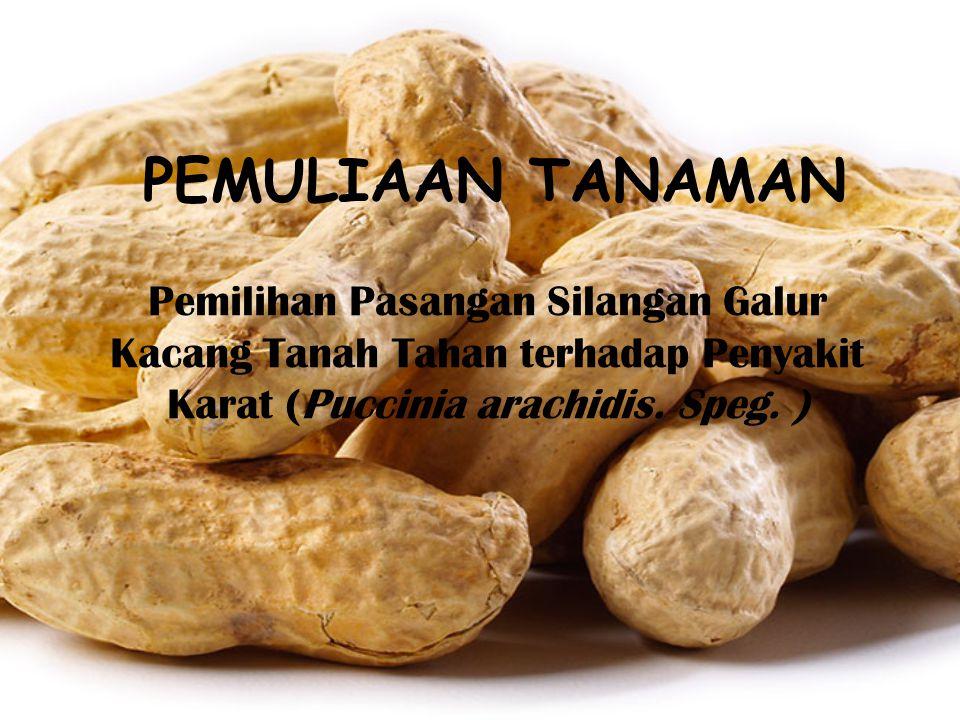 PEMULIAAN TANAMAN Pemilihan Pasangan Silangan Galur Kacang Tanah Tahan terhadap Penyakit Karat (Puccinia arachidis.