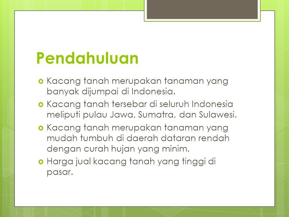 Pendahuluan Kacang tanah merupakan tanaman yang banyak dijumpai di Indonesia.