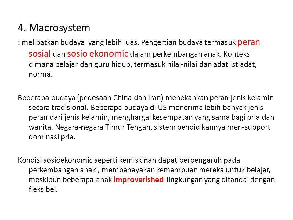 4. Macrosystem