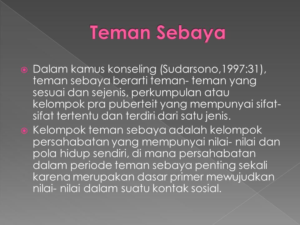 Teman Sebaya