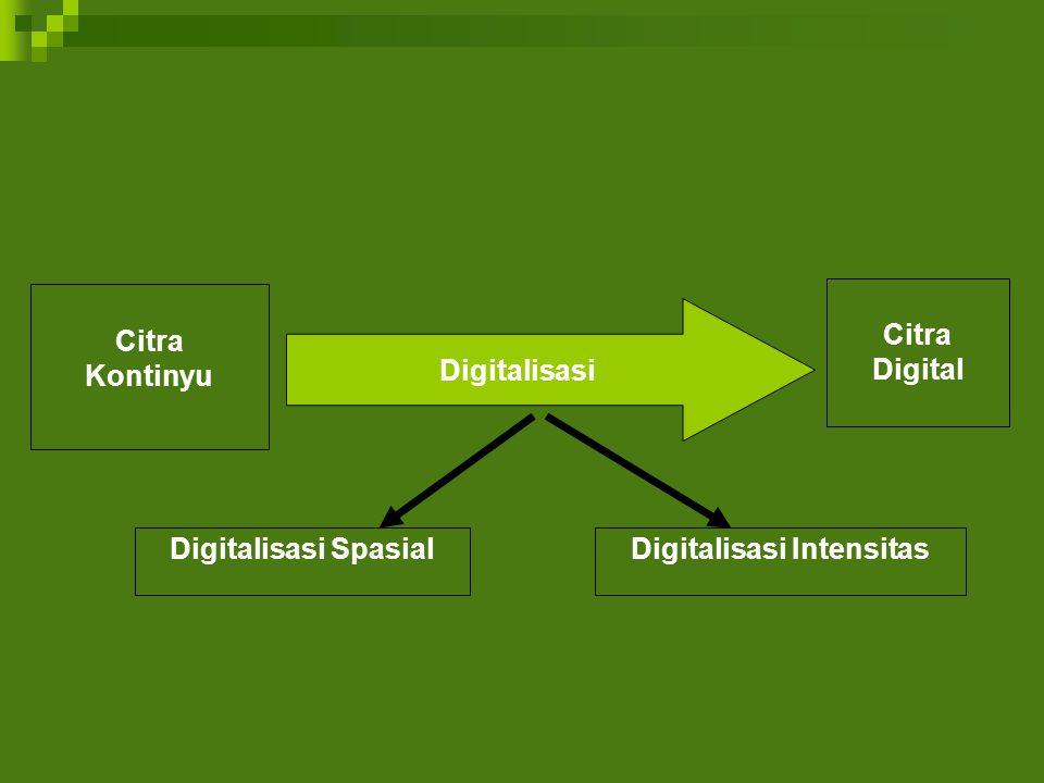 Digitalisasi Intensitas