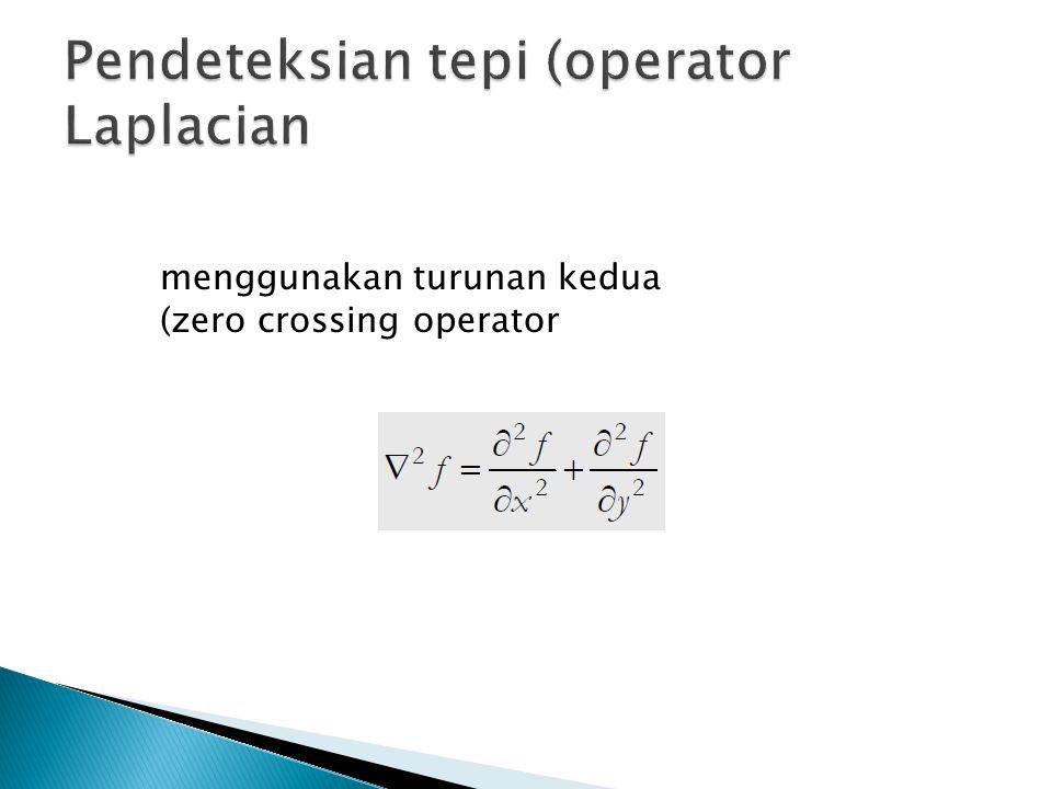 Pendeteksian tepi (operator Laplacian