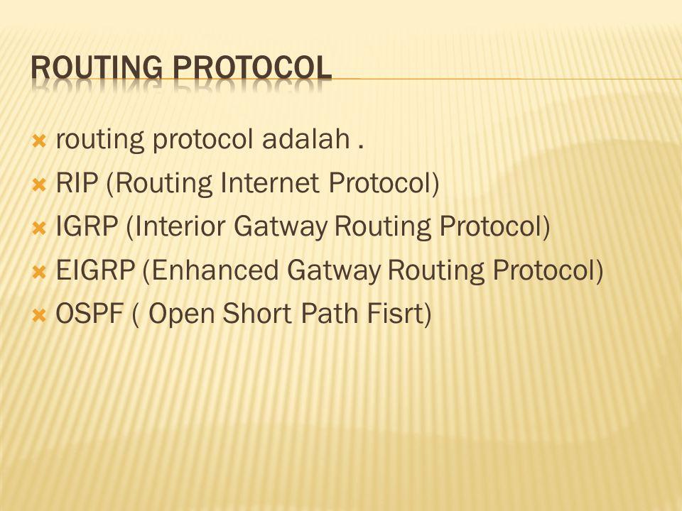 Routing protocol routing protocol adalah .