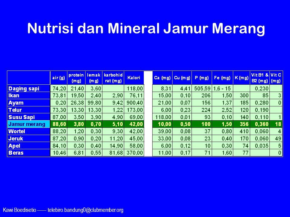 Nutrisi dan Mineral Jamur Merang