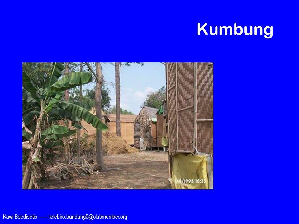 Kumbung Kawi Boedisetio ------ telebiro.bandung0@clubmember.org