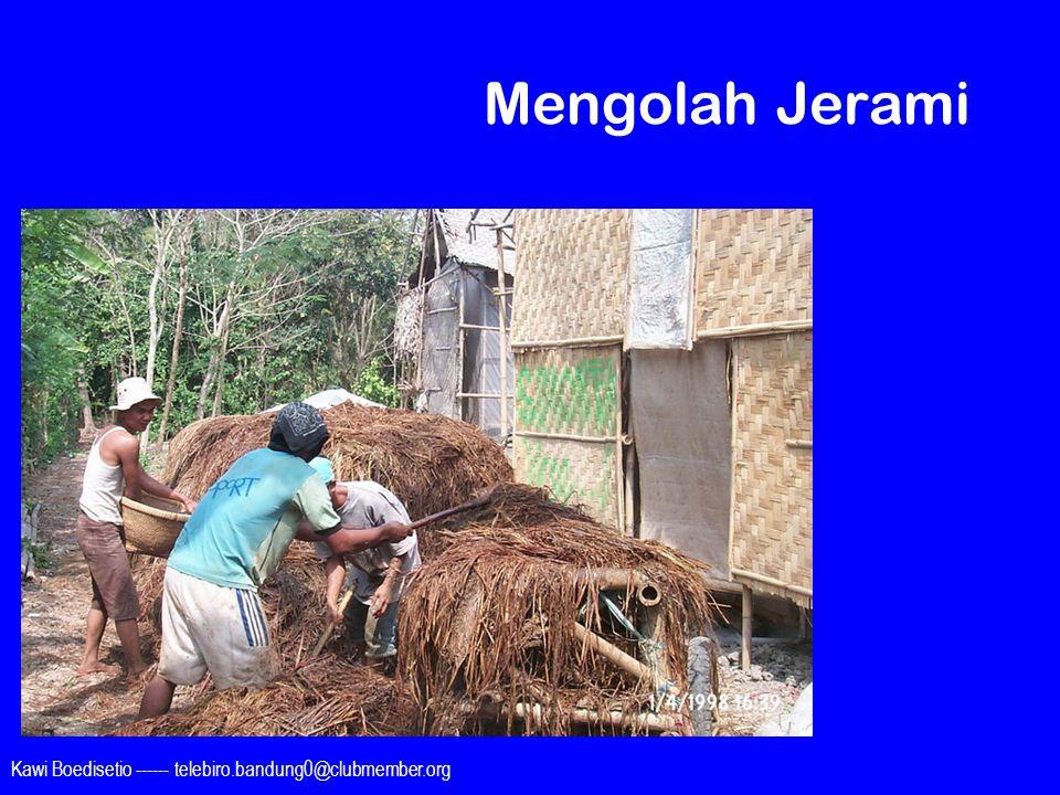 Mengolah Jerami Kawi Boedisetio ------ telebiro.bandung0@clubmember.org
