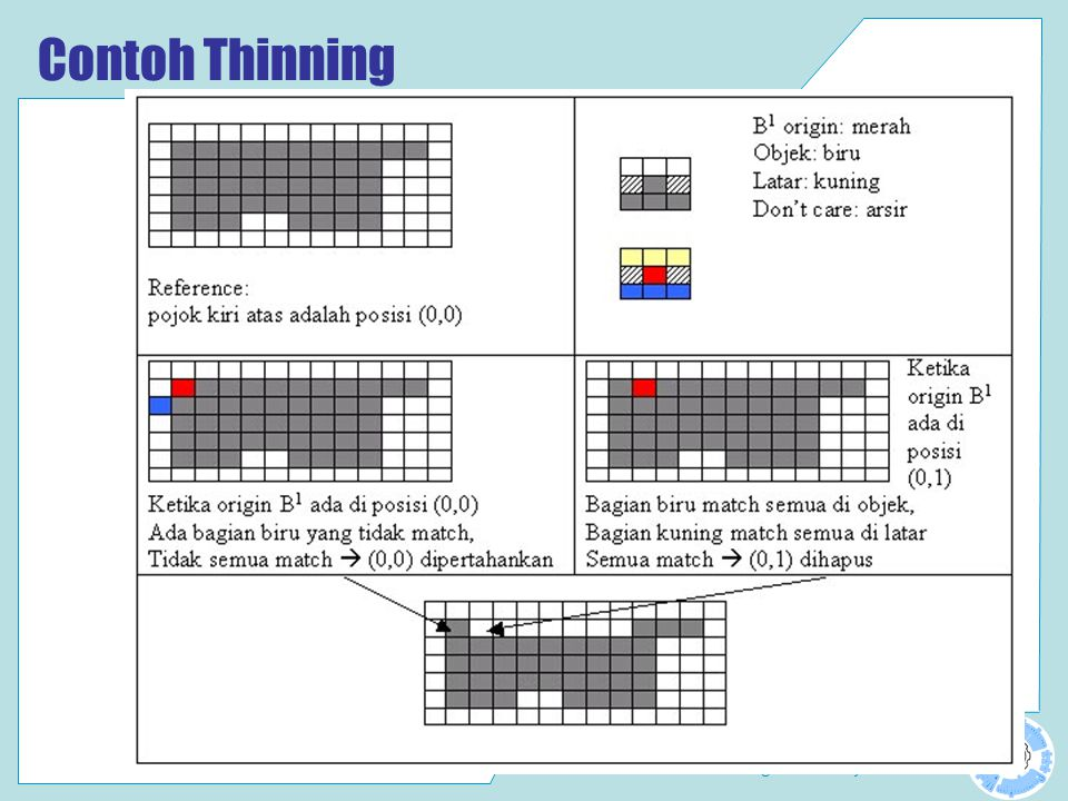 Contoh Thinning