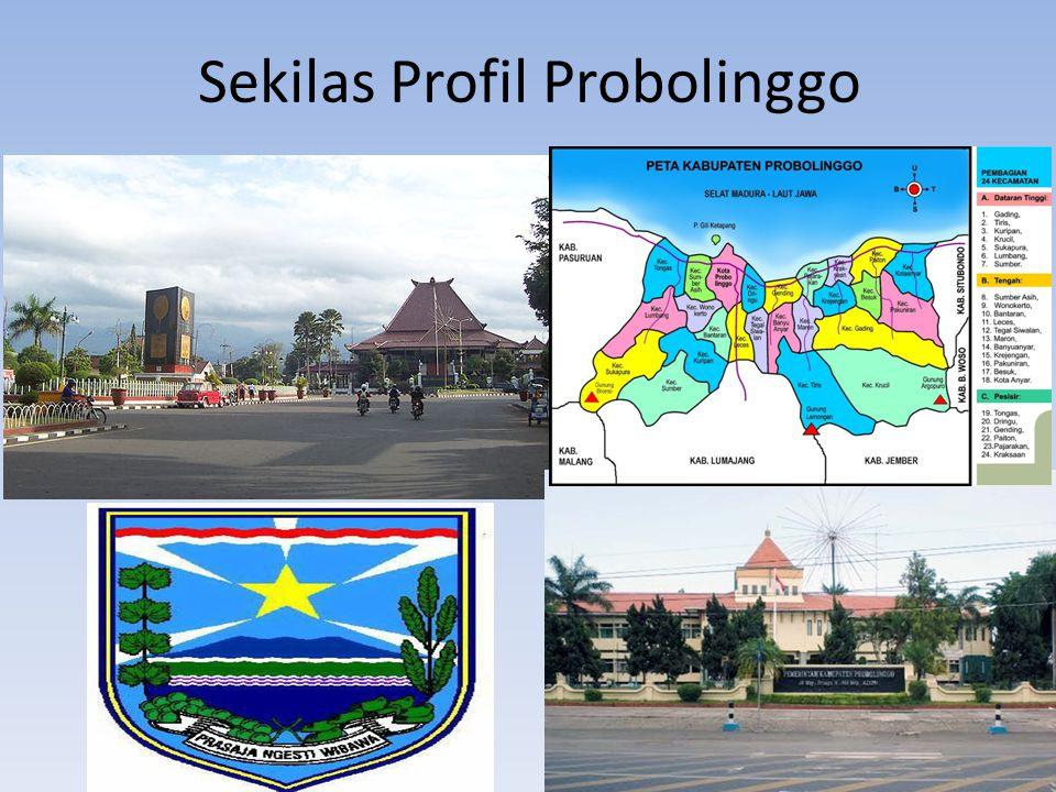 Sekilas Profil Probolinggo