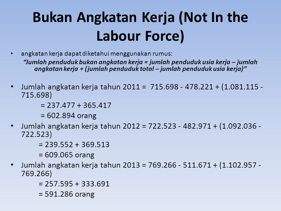 Bukan Angkatan Kerja (Not In the Labour Force)