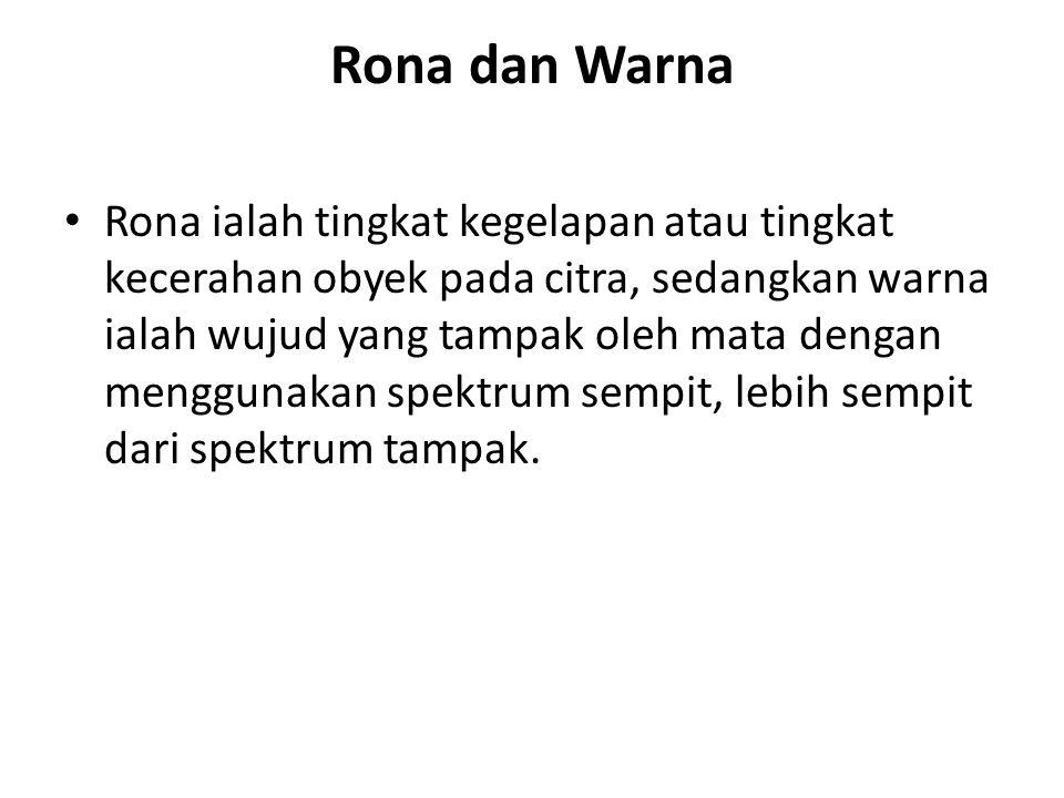 Rona dan Warna