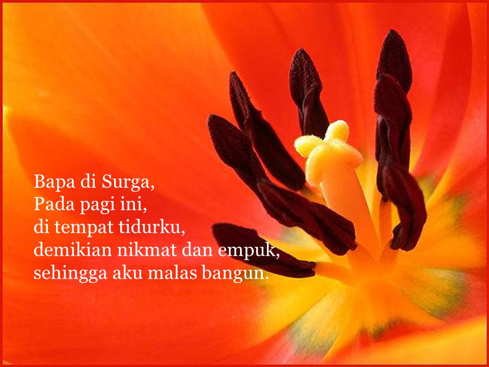 Bapa di Surga, Pada pagi ini, di tempat tidurku, demikian nikmat dan empuk, sehingga aku malas bangun.