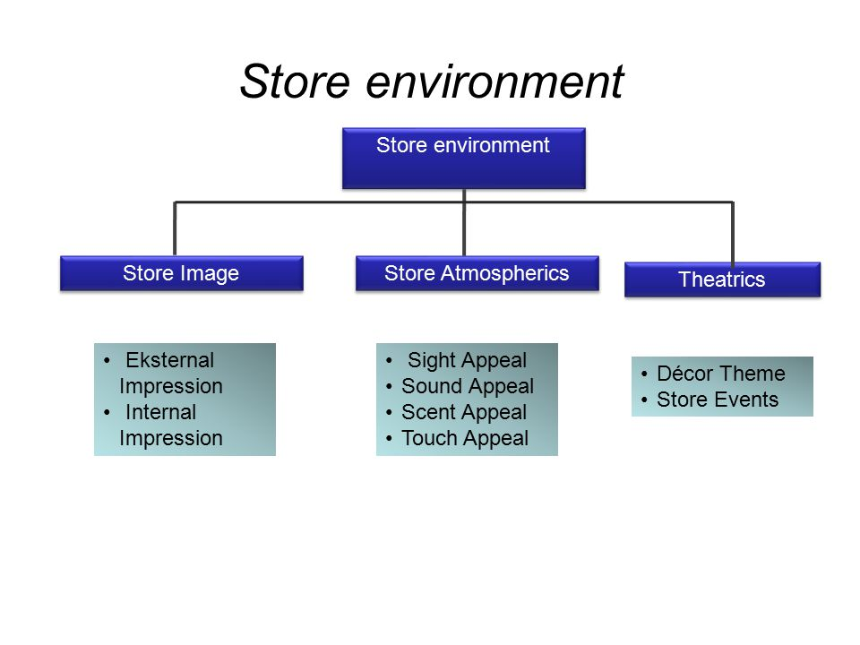 Store environment Store environment Store Image Store Atmospherics