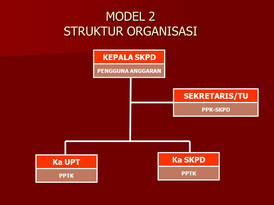 MODEL 2 STRUKTUR ORGANISASI