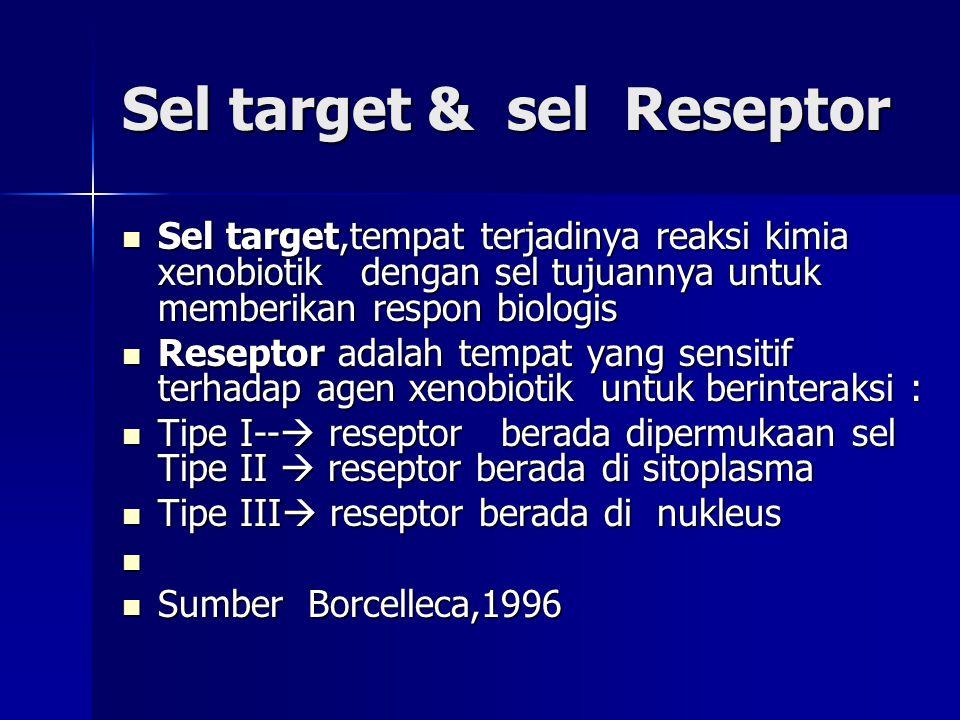 Sel target & sel Reseptor