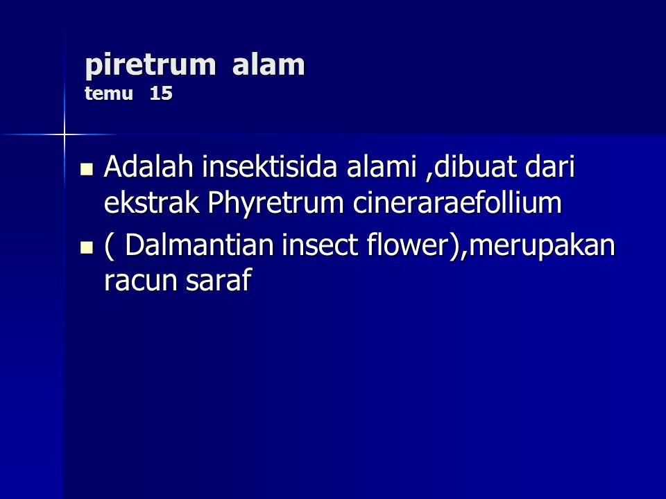 piretrum alam temu 15 Adalah insektisida alami ,dibuat dari ekstrak Phyretrum cineraraefollium.