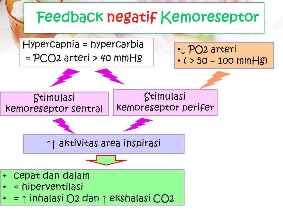 Feedback negatif Kemoreseptor